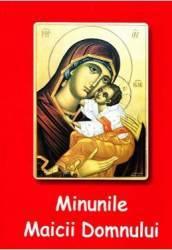 Minunile Maicii Domnului - Nicodim Mandita