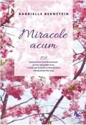 Miracole acum - Gabrielle Bernstein title=Miracole acum - Gabrielle Bernstein