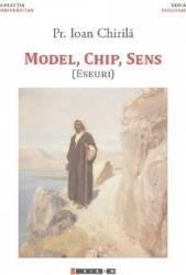 Model chip sens - Ioan Chirila