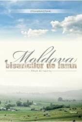 Moldova bisericilor de lemn - Otilia Balinisteanu