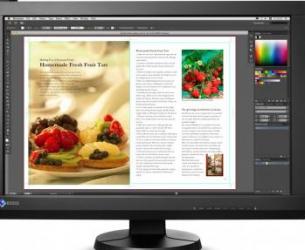 imagine Monitor IPS 24 Eizo ColorEdge CX240 Full HD cx240-bk