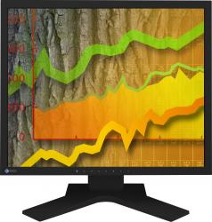 imagine Monitor LCD 19 Eizo FlexScan S1902 Negru s1902sh-bk
