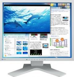 imagine Monitor LED 19 Eizo S1923H Gri s1923h-gy