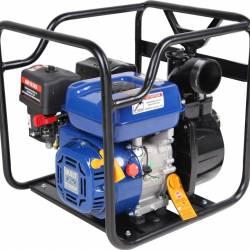 Motopompa Ford FPX30E pentru apa curata Debit apa 58 mc/h Pompe si Motopompe