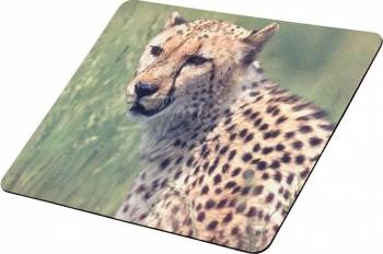 Mouse Pad Tracer Soft Cheetah S02