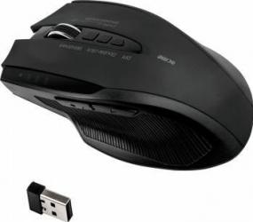 Mouse Wireless Acme MW15 3500 DPI USB Negru Mouse