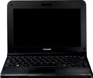imagine Notebook Toshiba NB250-101 N455 160GB 1GB WIN7 pll2pe-001026g5