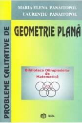 Probleme calitative de geometrie plana - Maria Elena Panaitopol