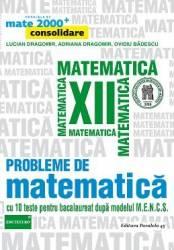 Probleme de matematica - Clasa a 12-a - Mate 2000+ Consolidare - L. Dragomir A. Dragomir O. Badescu