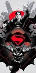 Prosop de baie Batman Vs Superman