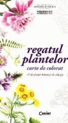 Regatul plantelor - Carte de colorat
