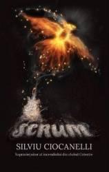 Scrum - Silviu Ciocanelli