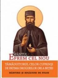 Sfantul Efrem Cel Nou Tamaduitorul Celor Cuprinsi De Patima Drogurilor Ori A Betiei
