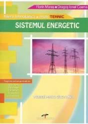 Sistemul energetic - Clasa XI - Manual - Florin Mares Dragos Ionel Cosma