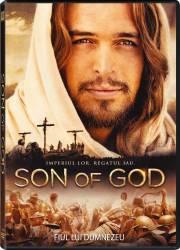 Son of God DVD 2014 Filme DVD