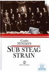 Sub steag strain - Costin Fenesan