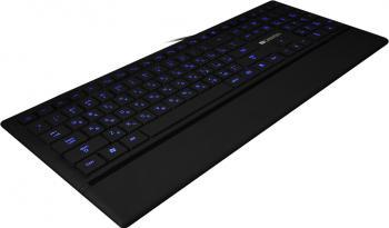 Tastatura Iluminata Ultra-Slim Multimedia Canyon CNS-HKB6US Neagra Tastaturi