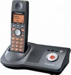 Telefon DECT Panasonic KX-TG8100