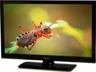 Televizor LED 48cm Orion T19 DLED HD Televizoare LCD LED