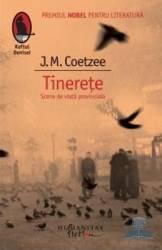 Tinerete. Scene din viata provinciala - J.M. Coetzee