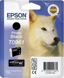 Cartus Epson Stylus Photo R2880 Photo Black