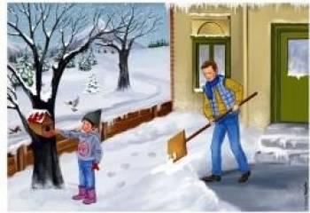 Totul despre Iarna - Planse - Dosa Daniela Cerchez Adrian Carti