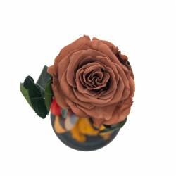 Trandafir Criogenat Cafeniu in cupola de sticla Queen Flowers Flori si Aranjamente florale