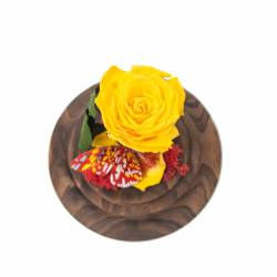 Trandafir Criogenat Galben in cupola clopot de sticla Queen Flowers Flori si Aranjamente florale