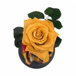 Trandafir Criogenat Portocaliu in cupola de sticla Queen Flowers Flori si Aranjamente florale