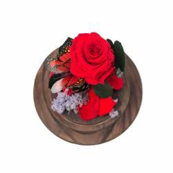 Trandafir Criogenat Rosu in cupola clopot de sticla Queen Flowers Flori si Aranjamente florale