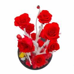 Trandafir Criogenat Roz in cupola de sticla Queen Flowers Flori si Aranjamente florale