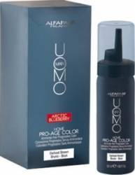 Gel colorant de par Alfaparf Uomo Pro Age Kit Color Bruno Vopsea de par