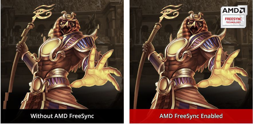 Visual Fluidity with AMD FreeSync