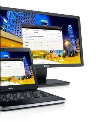 Monitorul Dell E2013h