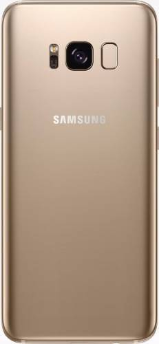 imagine 1 Telefon Mobil Samsung Galaxy S8 G950 64GB 4G Gold tsamg950ssgld